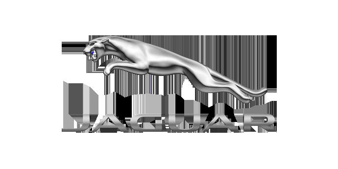 Jaguar logo - Viessmann Partners