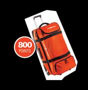 Viessmann Trolley Bag