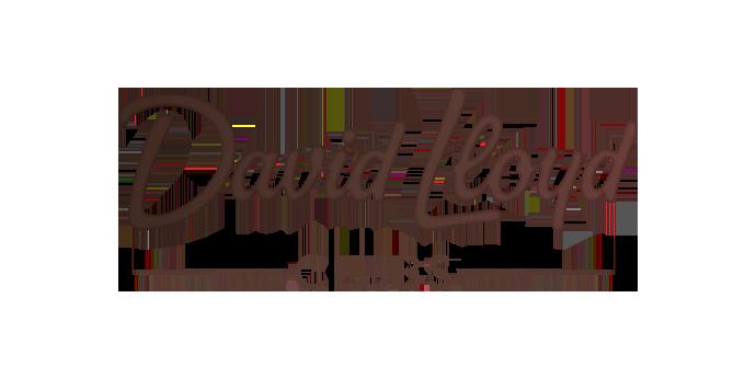 David Lloyd Clubs logo  - Viessmann Partners