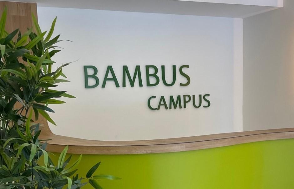 Schriftzug Bambus Campus auf einer weißen Wand mit Grünpflanze
