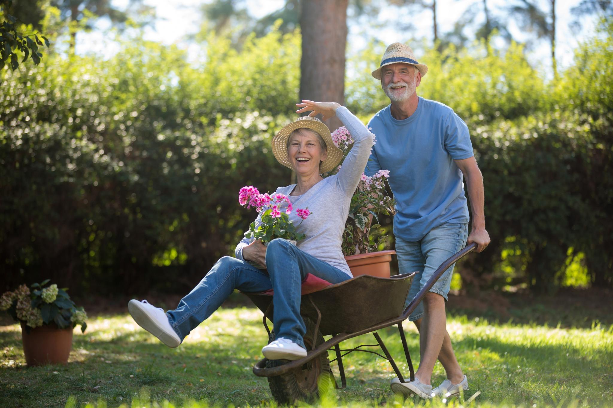 Lachende Frau wird von einem Mann in einer Schubkarre durch den Garten geschoben