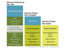Customer Services System Services Siemens Performance Plans