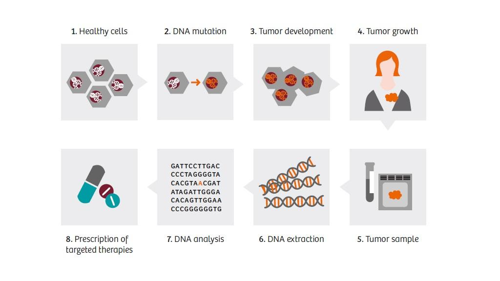 A personalized cancer therapy can only be generated with enough data. The bioinformatics analysis submits data fast and efficiently.