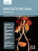 MAGNETOM Flash 53