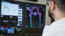Human Adams sits in front of a workstation and examines a SPECT/CT image.