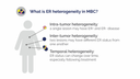 An infographic details what ER heterogeneity in MBC is.