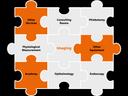 Community Diagnostic Hubs - jigsaw