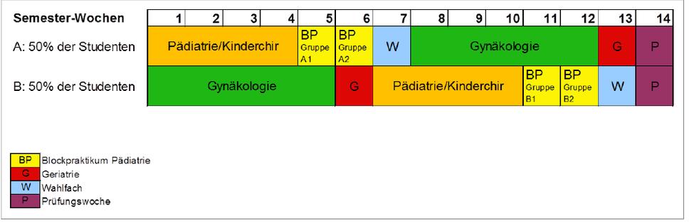 Zeitliche Einteilung des Modul 5