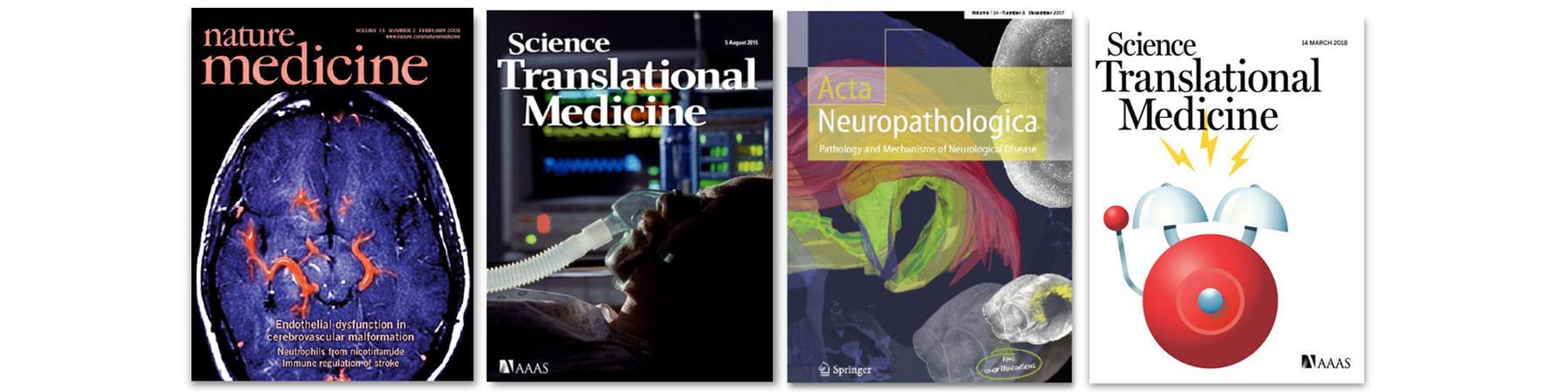 Liesz Publications