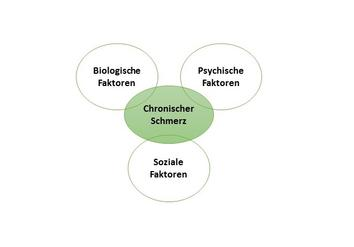 Bio-Psycho-Soziales Schmerzmodell