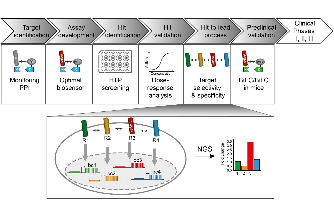 Applications of the split TEV system in drug development