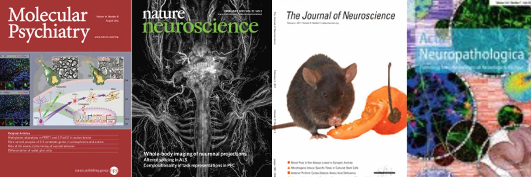 Publications Liesbscher Lab