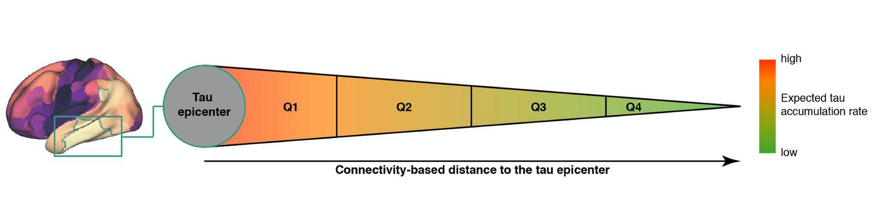 Franzmeier et al., Sci Adv, 2020