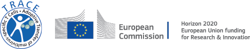 Trace_Europäische Kommission_Logo