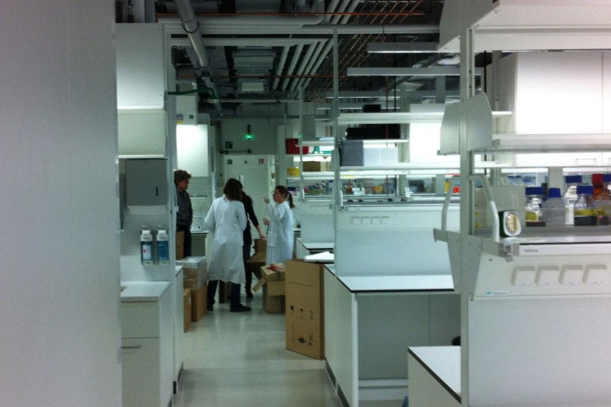 Liesz Lab