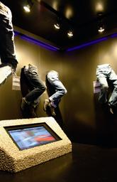 Mustang Museum