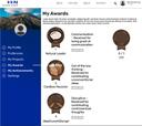 Mockup eines Awardboards der Plattform Idealize als Beispiel für Gameification-Elemente