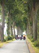 Gruppe fährt Fahrrad
