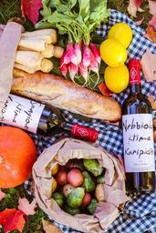 Das Bild zeigt verschiedene Zutaten, die zum Picknick gehören.
