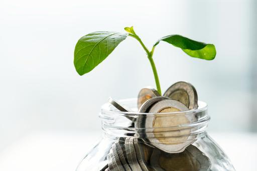 Das Bild zeigt ein Glas voller Münzen mit einer Pflanzen oben auf.