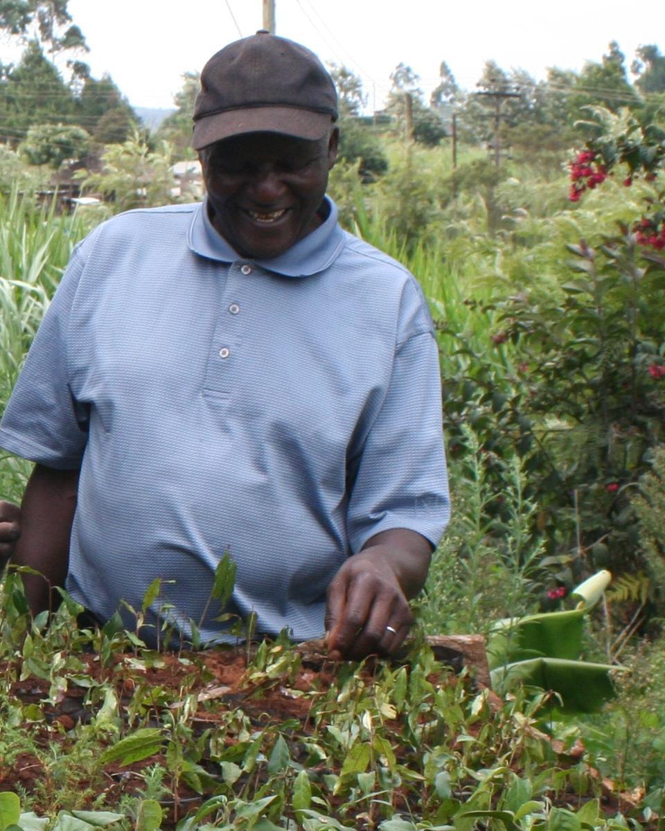 Das Bild zeigt einen Mann mit jungen Bäumen, die im Rahmen der ViMove Kampagene gepflanzt werden sollen.