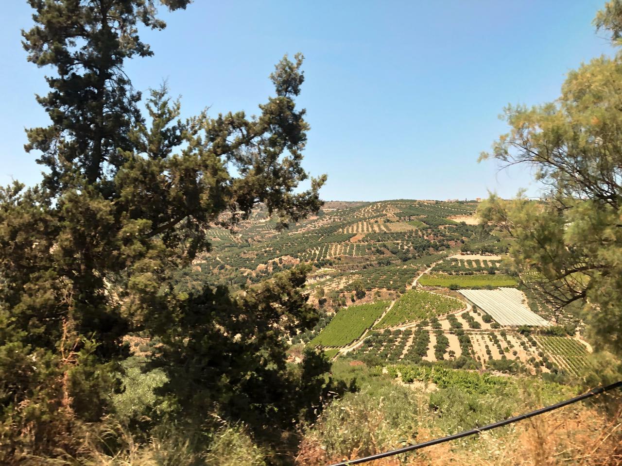 Das Kloster bietet einen tollen Ausblick auf die umliegenden Weinberge.