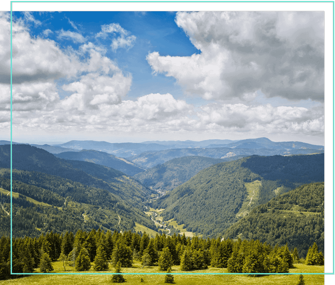 Schwarzwald und Berge