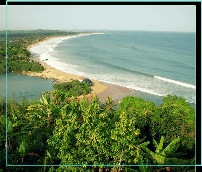 Regenwald an der Küste Ghanas