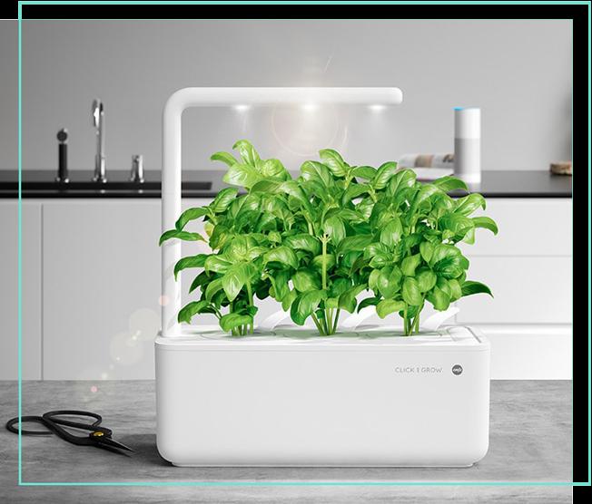 EMSA Smart Garden Kräutertopf