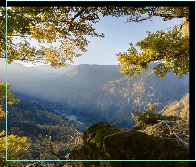 Schwarzwald Blick ins Tal