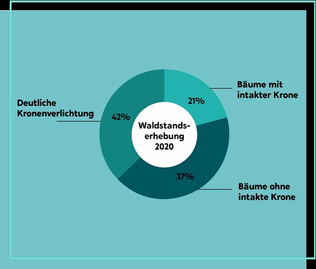 Grafik Ergebnisse Waldstandserhebung 2020