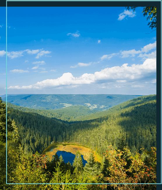 Blick von oben auf einen See im Schwarzwald