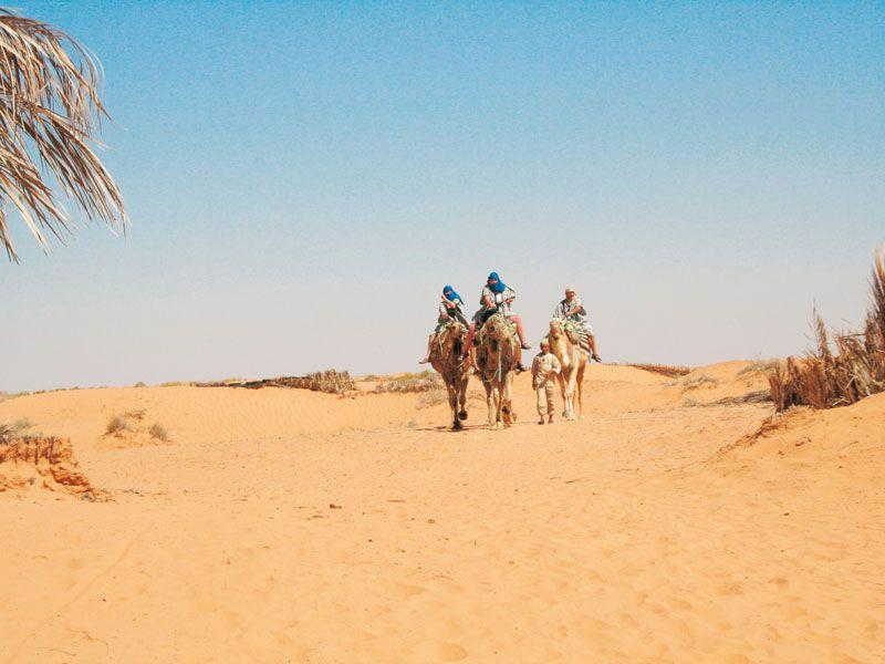 tunesien tunesien kamele reiten berge und meer