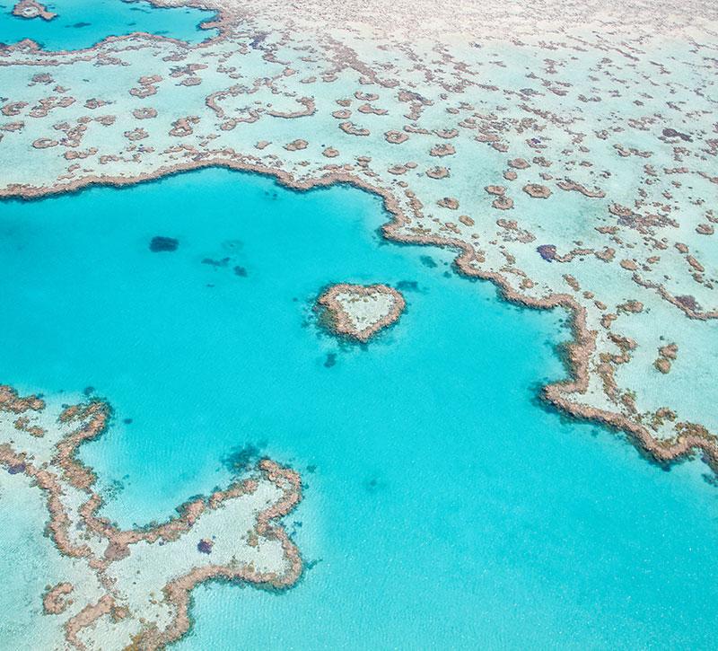 Palmen Strand Blaues Meer Sonne Bild auf Leinwand AMZ-1P