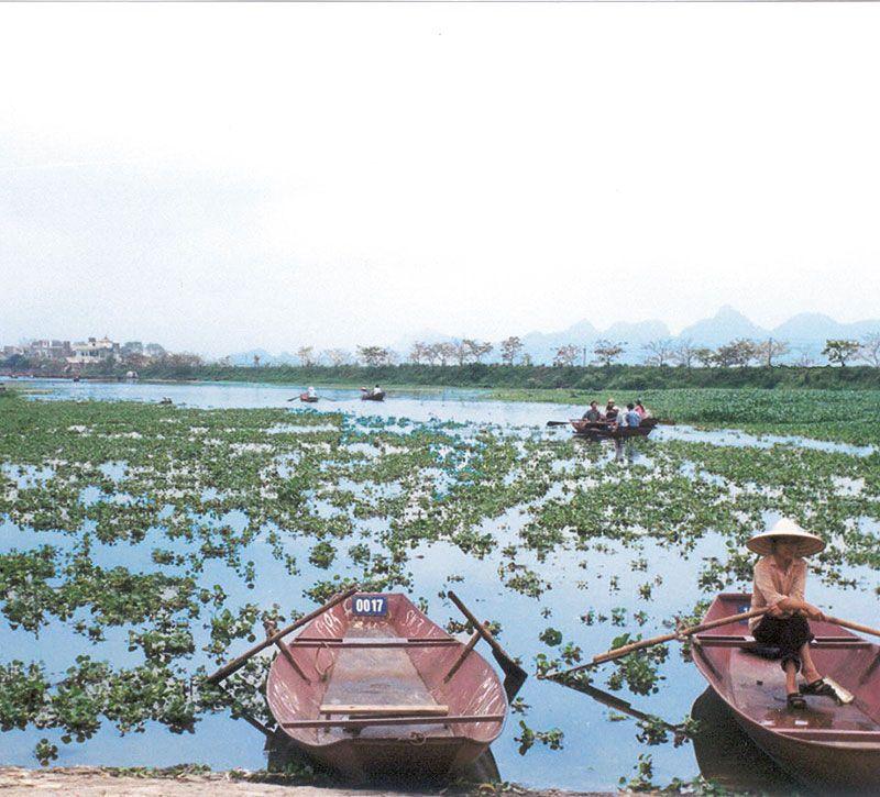 vietnam see berge und meer