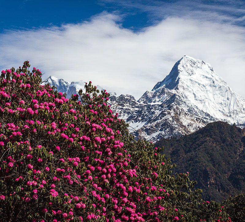 nepal sergemi berge und meer