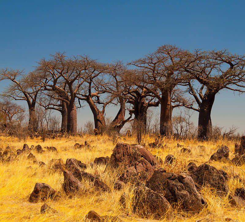 botswana botswana berge und meer