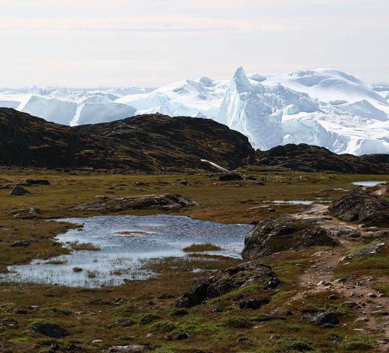 groenland morten elm berge und meer