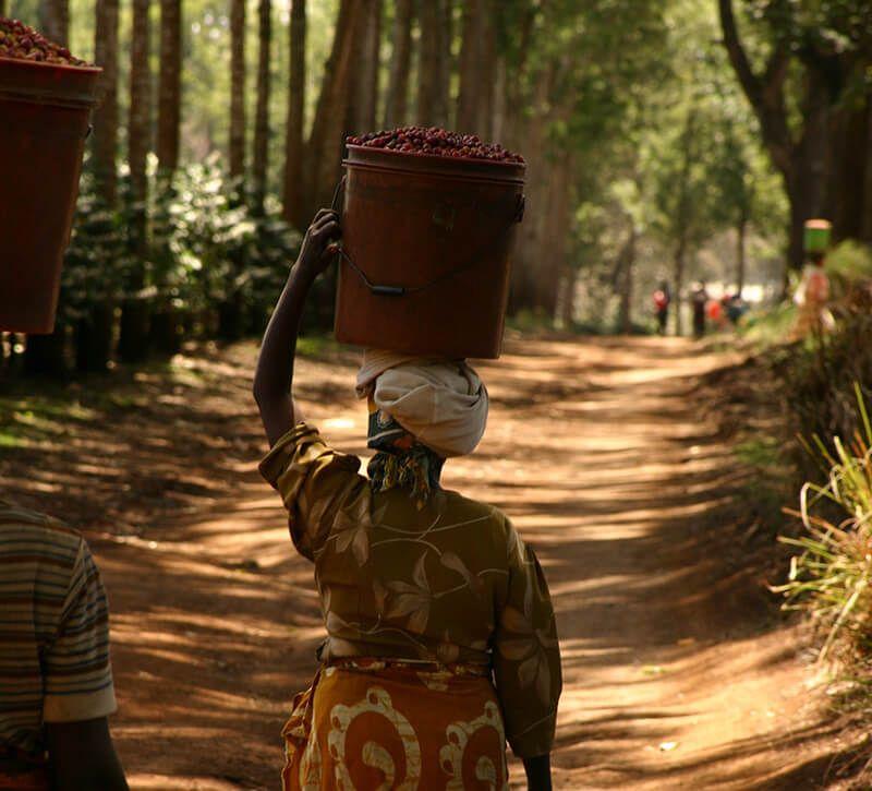 uganda frau hinten berge und meer