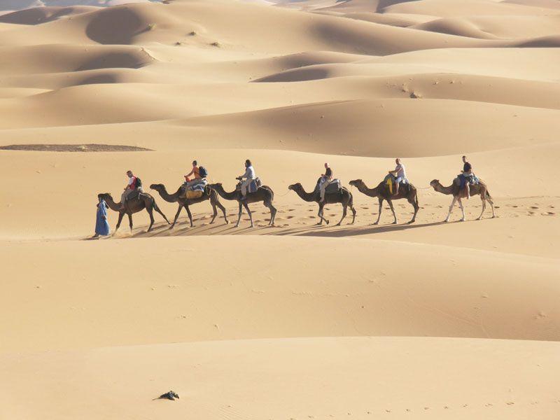 tunesien sahara kameltour berge und meer