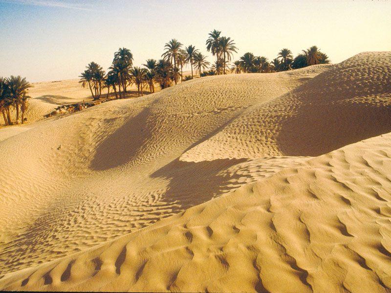 tunesien oase berge und meer