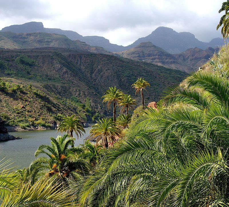 kolumbien anden berge und meer