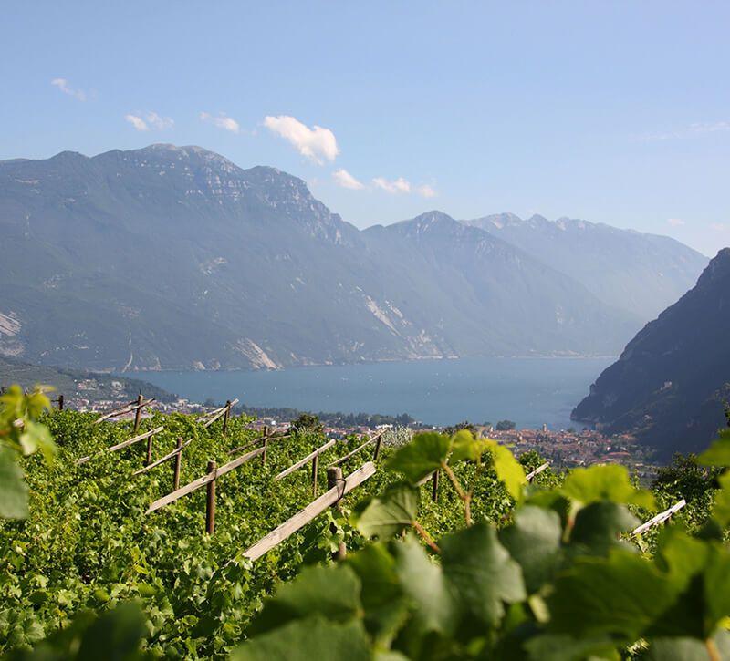 italien gardasee berge und meer