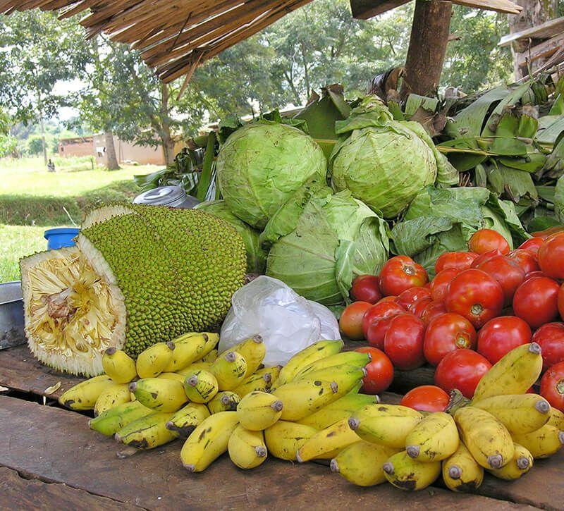 uganda marktstand berge und meer