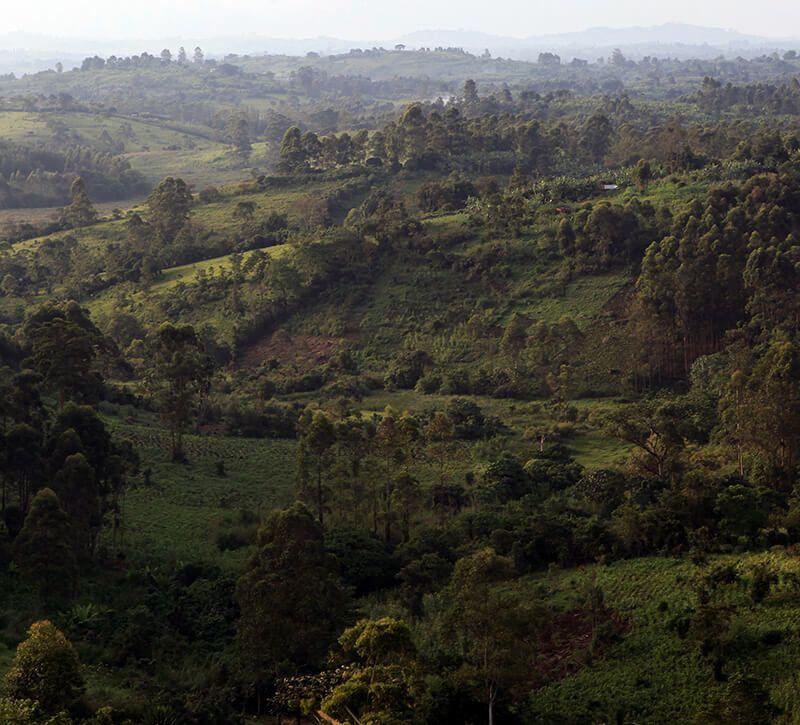 uganda kibale berge und meer