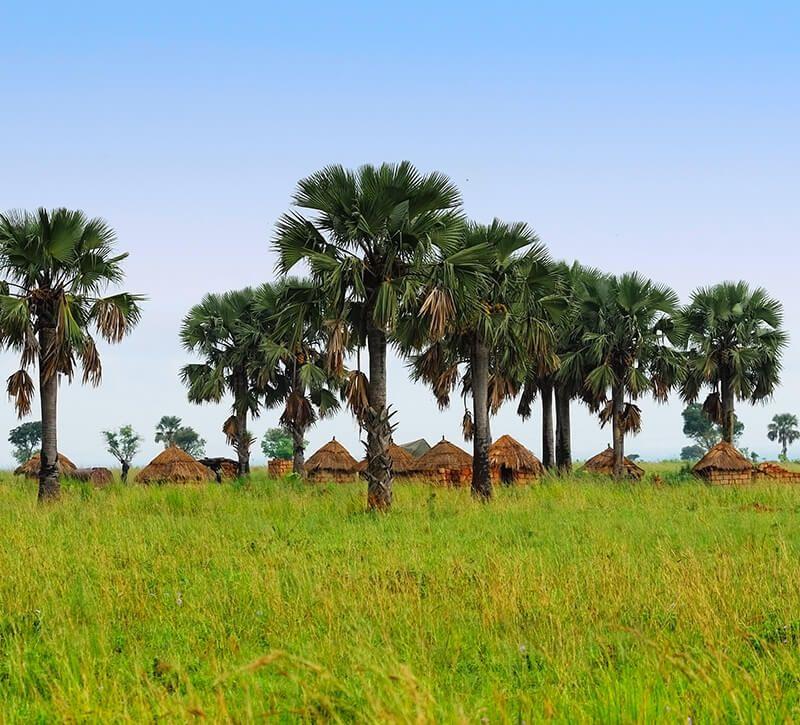 uganda dorf berge und meer