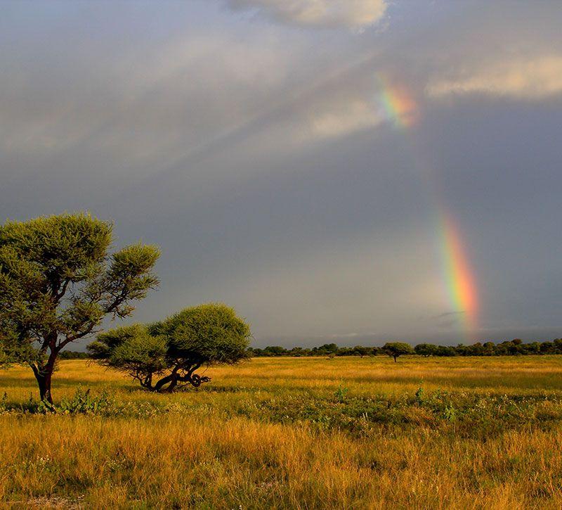 botswana kalahari berge und meer