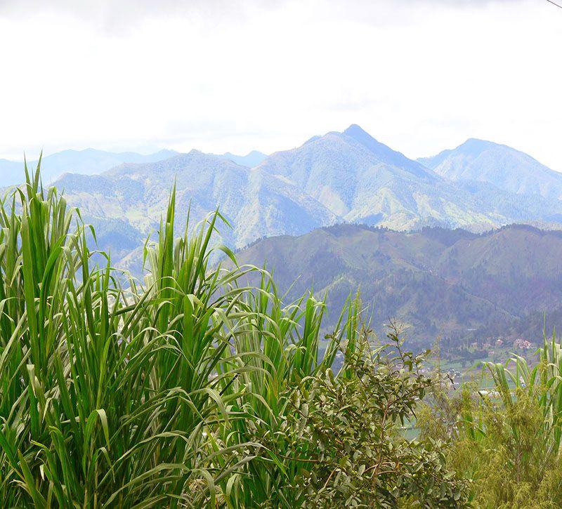 dominikanische republik bm constanza berge und meer