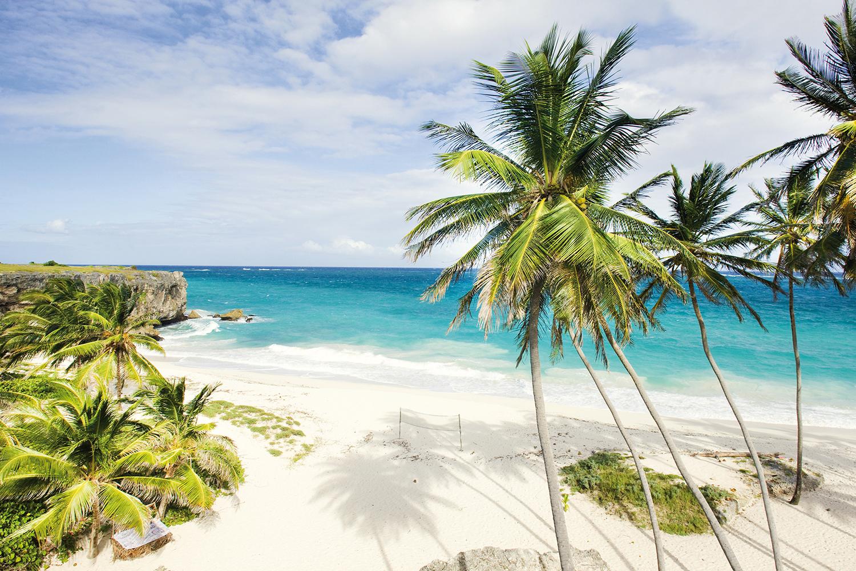 Amerika, Barbados, Strand, kueste, Palme berge und meer