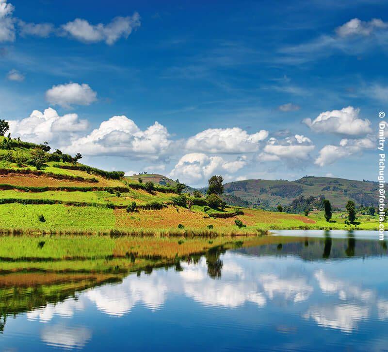 uganda flora berge und meer